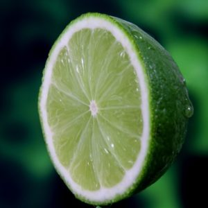 picture of fresh lime kitchen spirit recipe jill reid
